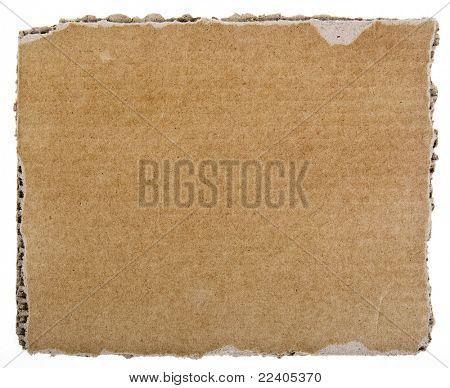 scrap of corrugated cardboard sheet