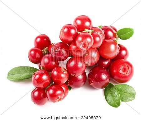 cranberries on white background