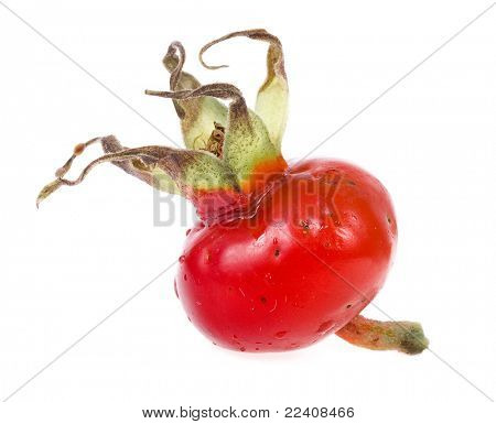 Rose hip isolated on white