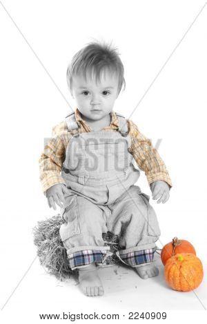 Farmer Baby In October