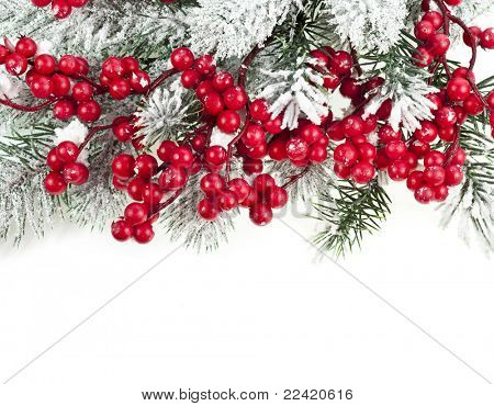 Christmas fir frame  with red berries on white background