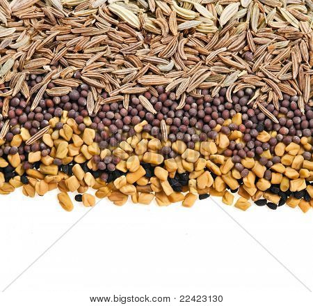 Indian Spices on white background