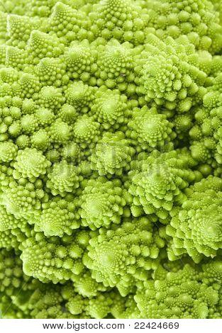 Cabbage romanesco broccoli macro