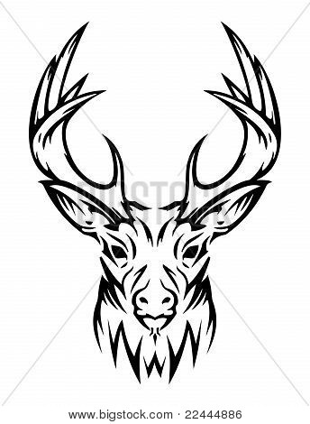 Deer cute (vector)