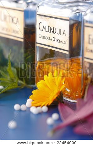 Close View Of Calendula Officinalis Plant Extract