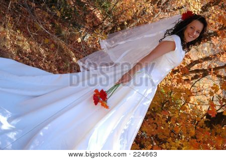 Autumn Bride