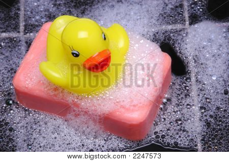 Rubber Duck On Soap