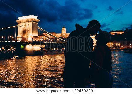 Romantic Silhouettes Portrait Of The