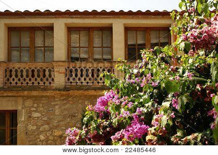 Old facade and flowering bush in Pubol