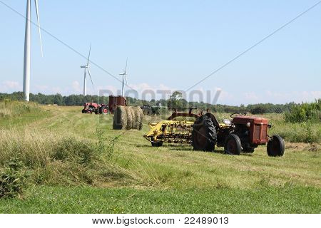 Harvest Time on Farm