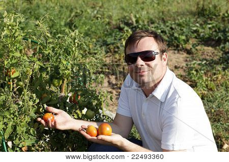 Man Poses Near Tomato Plants
