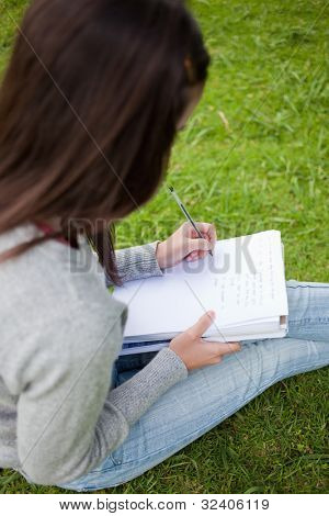 Overhead view of a young girl doing her homework while sitting in a parkland