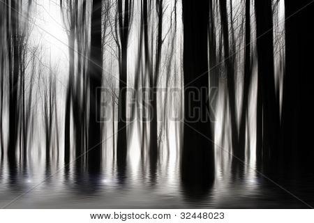 Assustadoras madeiras em BW com inundações