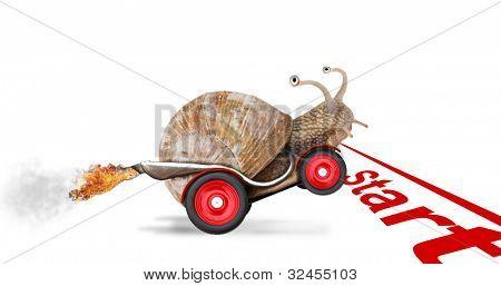 Speedy caracol que corridas de carro. Conceito de velocidade e sucesso. As rodas são borrão por causa do movimento. Isolat