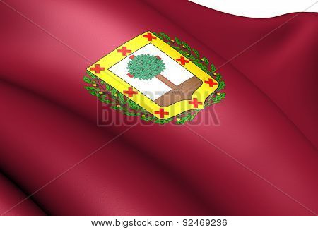 Flag Of Biscay, Spain.