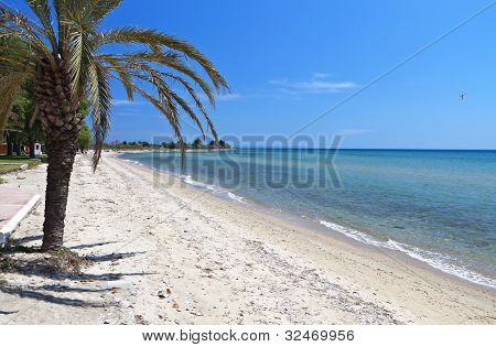 Scenic beach at Chalkidiki in Greece