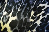 Beautiful Animal Print With Spots, Leopard Pattern And Animal Skin, White-brown With Gray Spots. poster