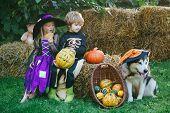 Halloween Kids Party In Garden With Pumpkins. Happy Kids On Halloween Party. Halloween Kids Holidays poster