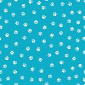 Seamless Pattern With Cute Dog Paws White Dog Paws On Blue Background poster