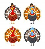 Vector Set Of Cartoon Turkey Birds For Thanksgiving Day Illustrations. Colorful Icons Of Thanksgivin poster