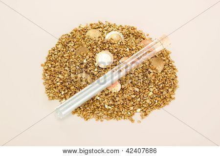 Treasure Of Gold