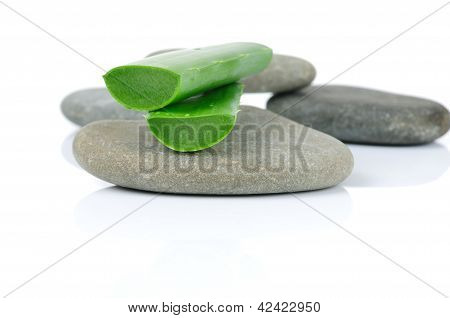 Sliced aloe leaves on the stone