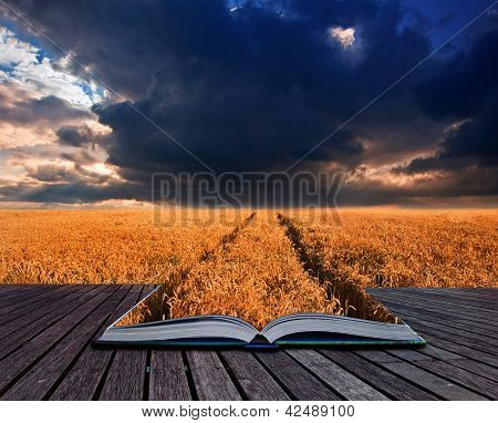 Golden Wheat Field Under Dramatic Stormy Sky Landscape In Pages Of Book Creative Concept Image