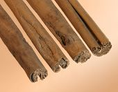 Cinnamon Sticks In A Row