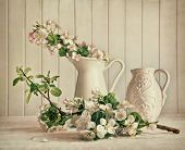 stock photo of stamen  - Still life of apple blossom flowers in vase on table - JPG