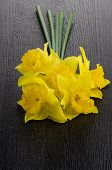 stock photo of jonquils  - Yellow jonquil flowers on dark wooden background - JPG