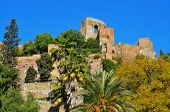 a view of Alcazaba of Malaga, in Malaga, Spain