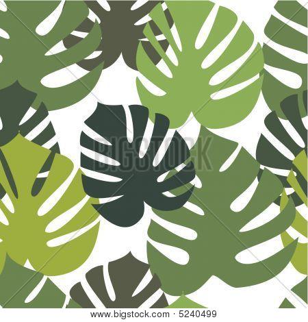 Monstera hojas de patrones sin fisuras