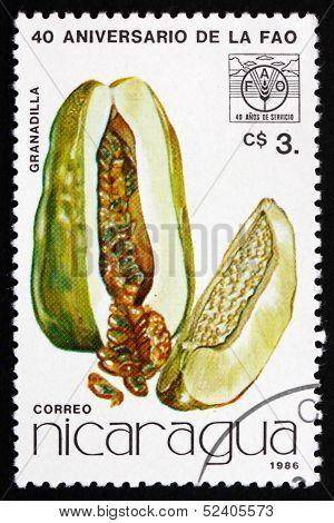 Postage Stamp Nicaragua 1986 Granadilla, Fruit