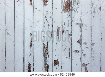 Paint Wooden  Background
