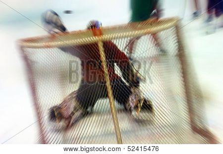 Goalie glove save, motion blur