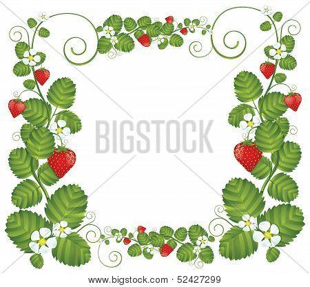 Strawberry Floral Frame