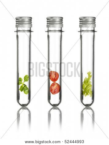 gene manipulated vegetables in tubes with white background