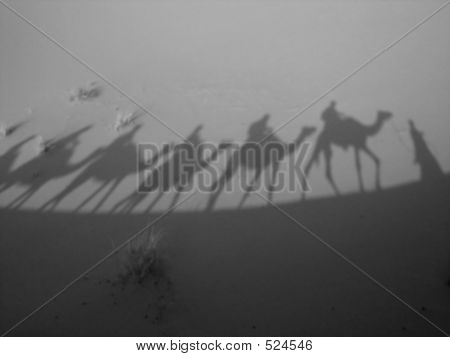 Shadow Of A Caravan In B/w