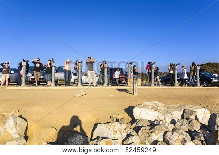 Tourists Are Watching The Famous Seal Rock Near Point Lobos