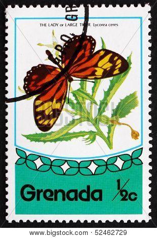 Postage Stamp Grenada 1975 Tropical Milkweed Butterfly