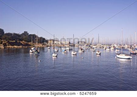 Yachts On Monterey Bay