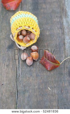 Bag With Hazelnuts And Leafs