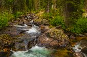 Cascade Creek Grand Tetons