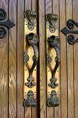 Ornate Brass Door Handles