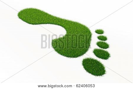 Grass Footprint Ecology Concept