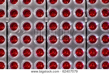 96 Well Plates On Lab Table With Red Liquid Samples