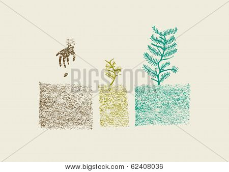 Hand Drawn Tree Growing Process In Three Steps Vector Illustration