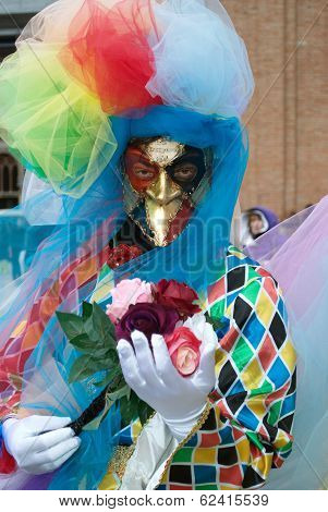 Harlequin Mask In Venice