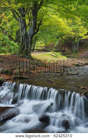 Threshold waterfall on a mountain river. Forest landscape with a stream of cold water. Carpathians, Ukraine