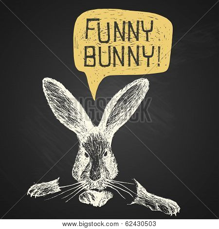 Easter Hand-drawn Funny Bunny With Humorous Phrase On Chalkboard Background